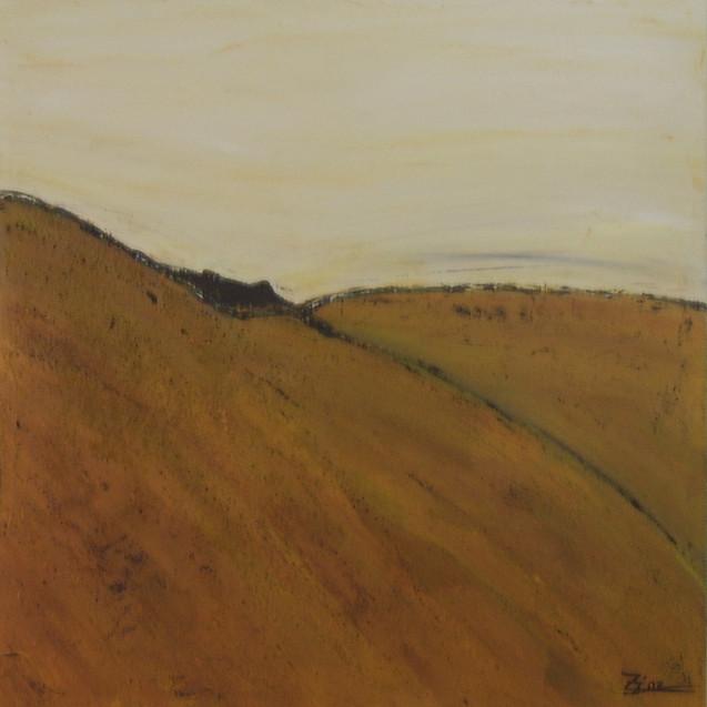 Landschaftsvariationen