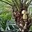 Thumbnail: Pineapple Hanger - large