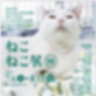 XONz7DuQ.jpg