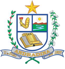 Município de Andradina
