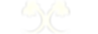 logo-modele CHAFIA - NoirBlanc copie.png