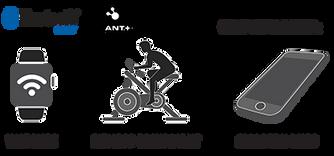 心跳帶支援運動手錶、手機及相關運動設備