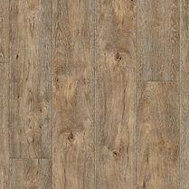 Tabor Oak.jpg