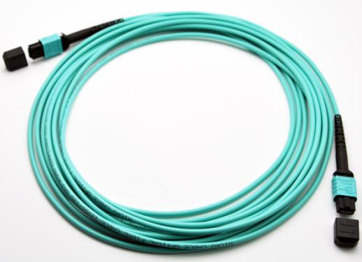 MPO-MPO 8-Core OM4 Plenum Trunk Cable