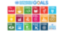 Sustainable Development, Global Goals, Eating Disorder solution, Women Eating Disorder Specialist