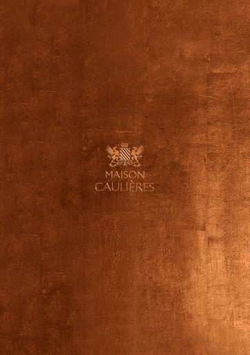 MAISON CAULIERES 1