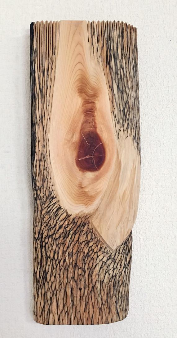 木の鳥 Wooden Bird