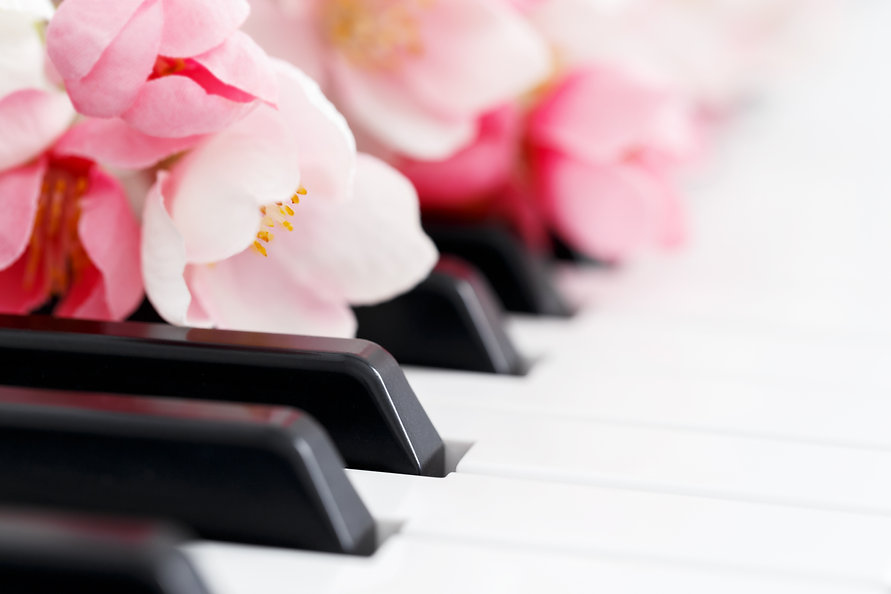 Romantic concept, piano and pink spring blossom flowers, close up.jpg
