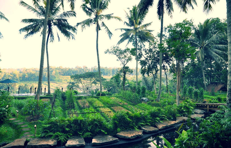 Bambuh Indah - vue