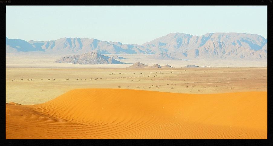 Les dunes de Wolvedans