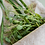Thumbnail: Urban gardening komplekts