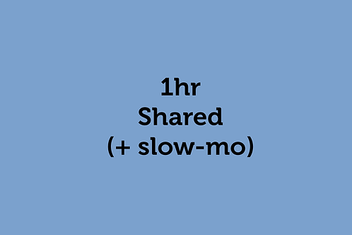 1hr Shared (plus slow motion) (Hestow 29/8/2020)