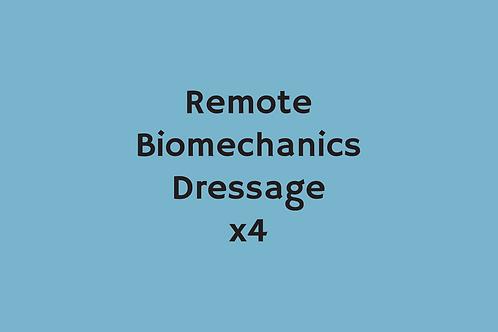 Remote Biomechanics Dressage (x4)