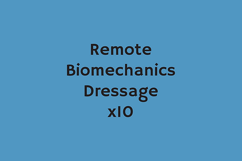 Remote Biomechanics Dressage (x10)