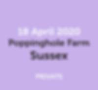 4_18_sussex_website.png