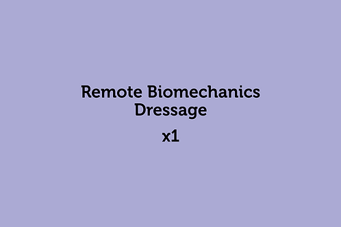 Remote Biomechanics Dressage (x1)
