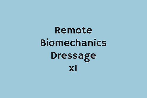 Remote Biomechanics Dressage (x1)