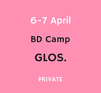 2021_4_6_bdcamp_website.png