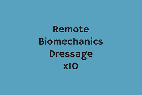 Remote Biomechanics Dressage (x10)
