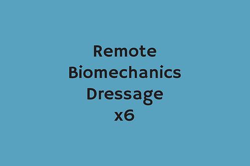 Remote Biomechanics Dressage (x6)