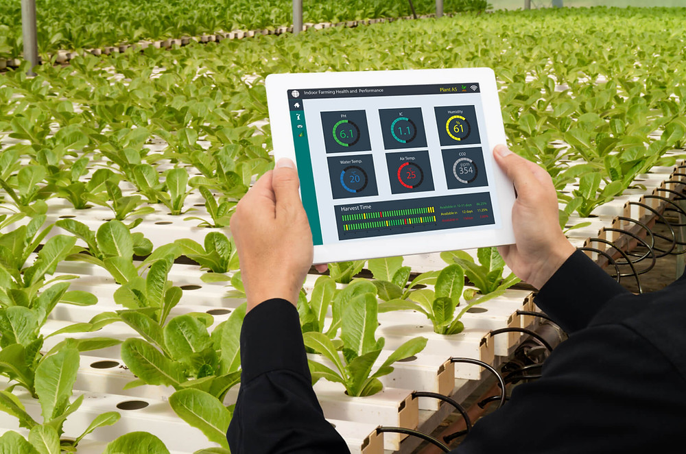 Umfangreiche digitale Überwachung der Nährstoffe, Wasser, Luft und vielem mehr!