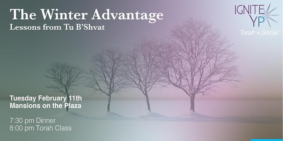 The Winter Advantage