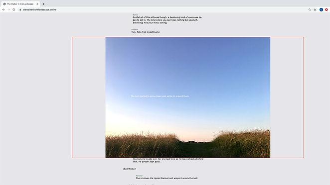 web4.jpeg
