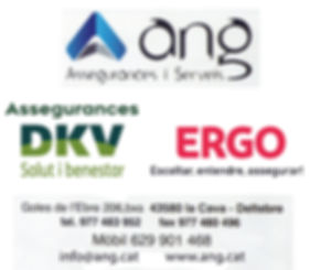 assegurances ANG.jpg