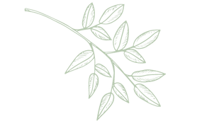 Copy of Copy of Logo Leisurely Layne.png