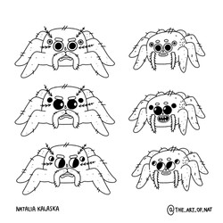 Character concept - spider
