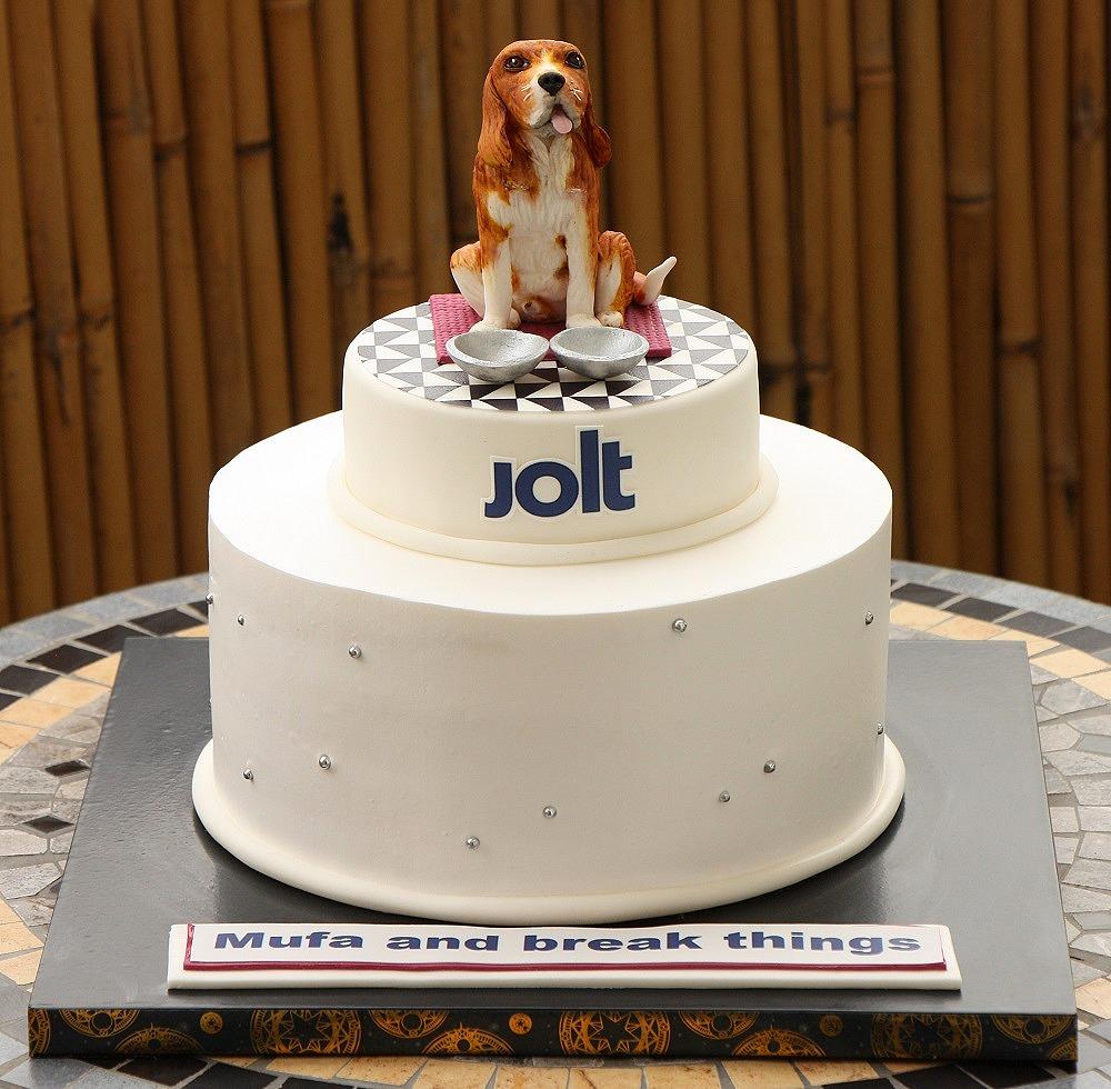 עוגת כלב