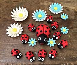 קישוטי חיפושיות ופרחים