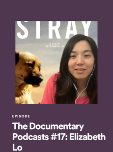 THE DOCUMENTARY PODCASTS