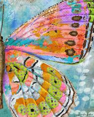 Celebration Butterfly