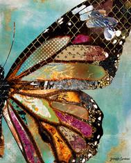 blueskies butterfly.jpg
