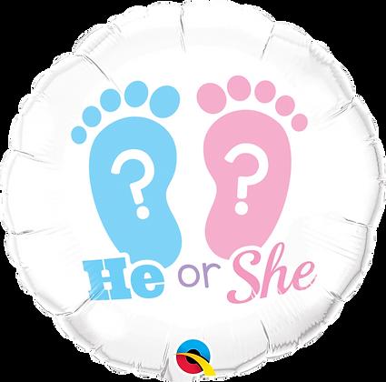 HE OR SHE? FOOTPRINTS