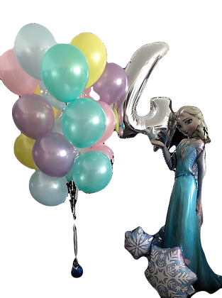 Frozen Elsa Set