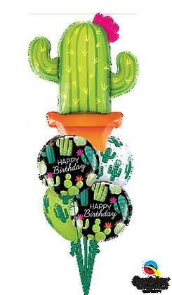 Happy Birthday Cacti
