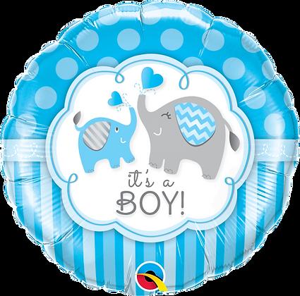IT'S A BOY ELEPHANTS