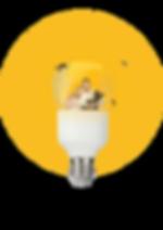 Pampadina E27 famiglia bagiore gialla tr