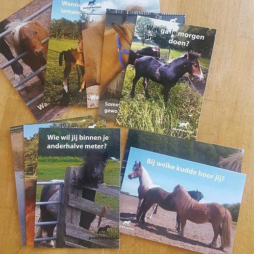 Ponykaartjes - 7 x 10 verschillende ansichtkaarten