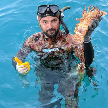 Crew member catches fresh lobster for dinner at Sailing Chef