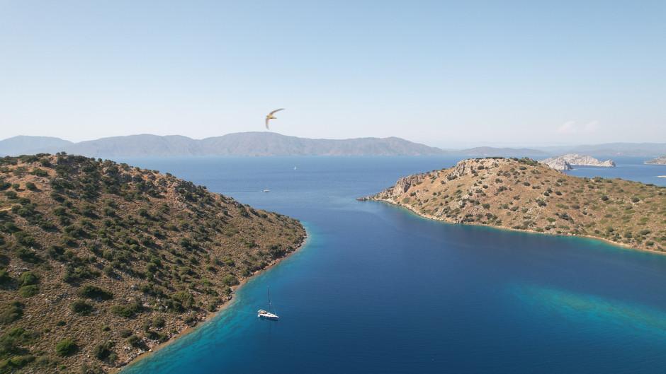 BREAKING NEWS | Greece - Turkey border reopening and normalization progress