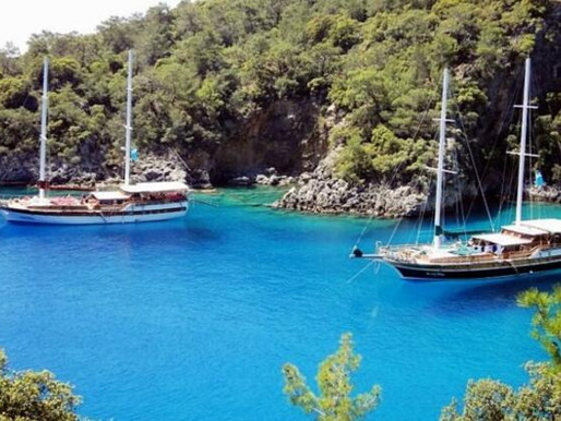 Daily News Article: 'Blue cruise' yachts to meet demand for holidays in isolation