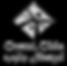 silver logo1.png