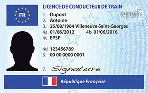 cartes_licence_conducteur_original.jpg