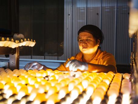 La fuerte política medioambiental de huevos Santa Marta