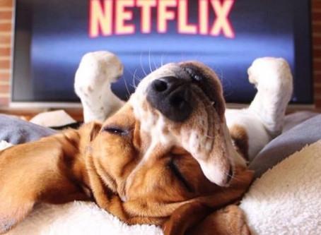 """Tengo una basurita en el ojo:""""Dogs"""", el documental de Netflix que te hará llorar"""