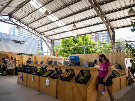 Mercado Macul reunirá a más de 60 emprendedores del centro sur de Santiago
