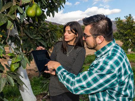 Día mundial del Agua: Plataforma digital puede ser clave para enfrentar la sequía en agricultura